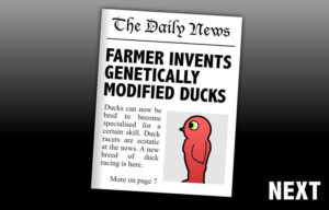 duck life evolution